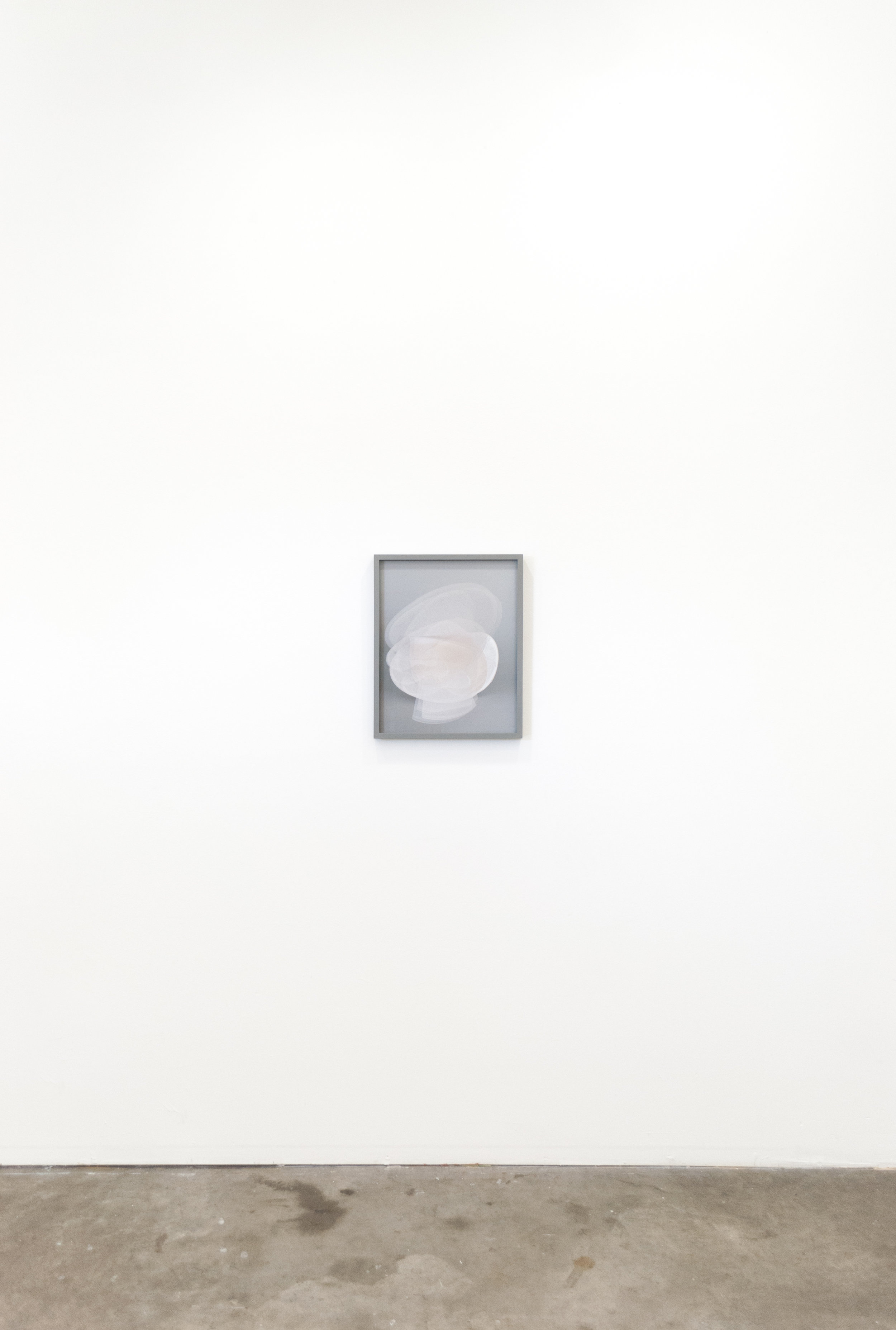 Melanie_Flood-Latent_Desire-Install-11.jpg