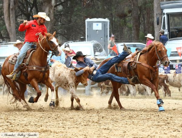 Harveydale-rodeo-2018.jpg