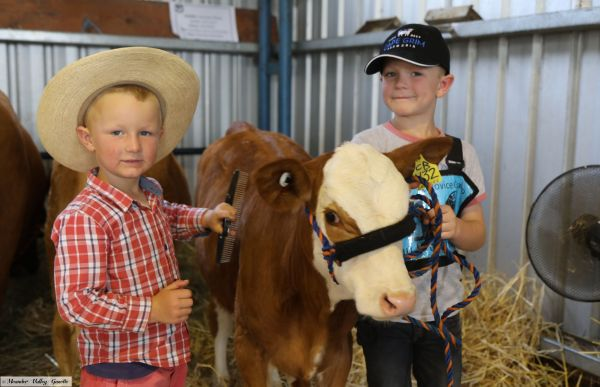 Mitch-Woodiwiss-age-5-brother-Beau-age-8-both-of-Sunnyside-with-Simmental-calf-Dame-Leenicky.jpg