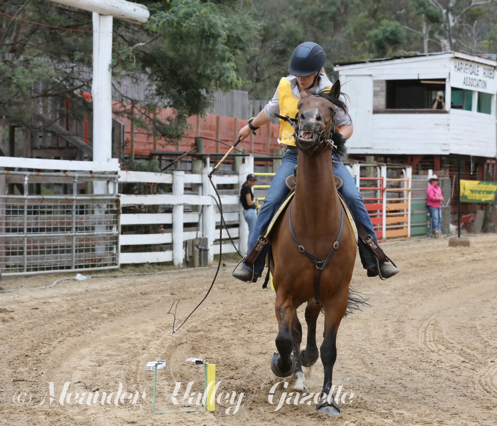 Mountain Cattleman's get together Harveydale Feb 2019 Image 3