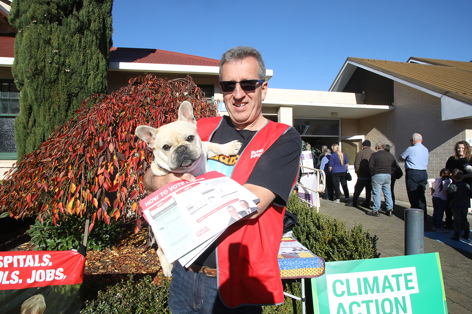 Geoff Blyth and Patrick, an 8-month-old French bulldog, hand out How-to-vote flyers in front of the Westbury polling booth in Lyall Street on Saturday 18 May.  Photo by Mike Moores