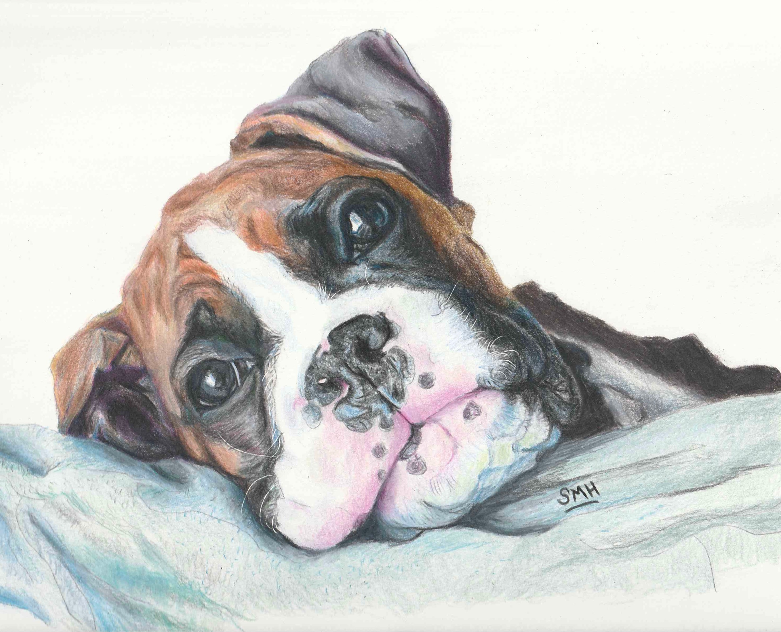 Laszlo, Colored Pencils