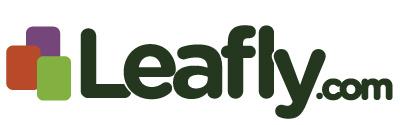 Leaflycom-logo.jpg