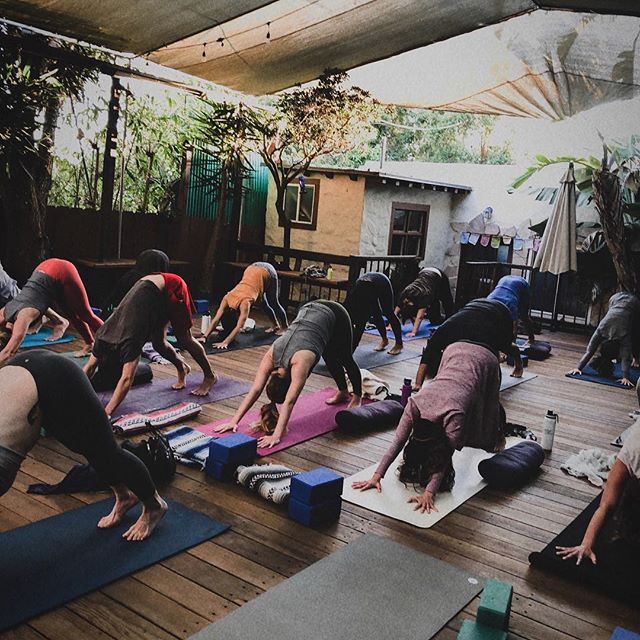 So happy to have shared space with such beautiful, radiant humans for the Wanderlust Pre-Event. 🌿✨ Thank you @riffsyogastudios_br and @wanderlustfest for allowing me to share and create a beautiful container for a radical yoga + sound healing practice topped off with an herb bar for take-home blends. 🔥 ⠀⠀⠀⠀⠀⠀⠀⠀⠀ Swipe for a lil snippet of sound. 📸: @yogawithjax #wanderlust108sandiego