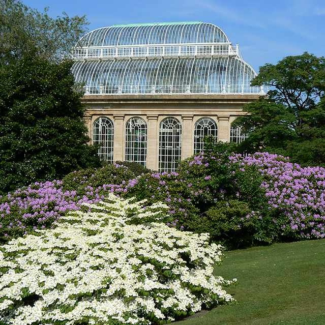 royal-botanic-garden-edinburgh-cd4245a.jpg