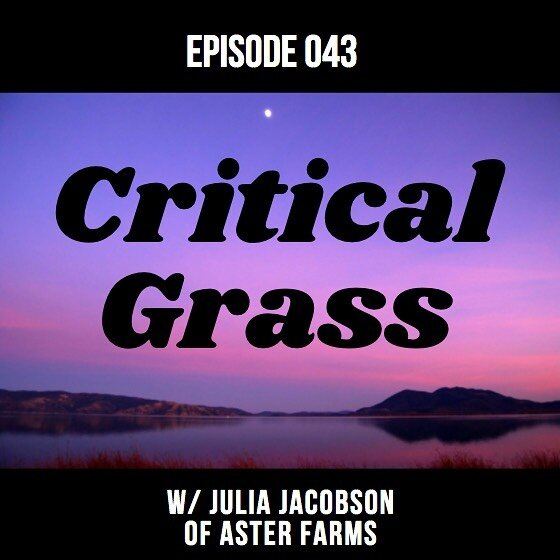 Don't miss the latest CG episode w/ Aster Farms CEO Julia Jacobson! shorturl.at/jmSZ3 #CriticalGrass #AsterFarms #craftcannabis #lakecounty #oakland #mendocino #emeraldtriangle #california #sustainability #regenerativefarming #710 #420 #THC #CBD #cannabiscommunity #cannabispodcast  #medicalcannabis #cannabisextract  #cannabidiol #cannabinoids #ganja #weed #marijuana #medicalmarijuana #cannabis #hemp #hash #hashish