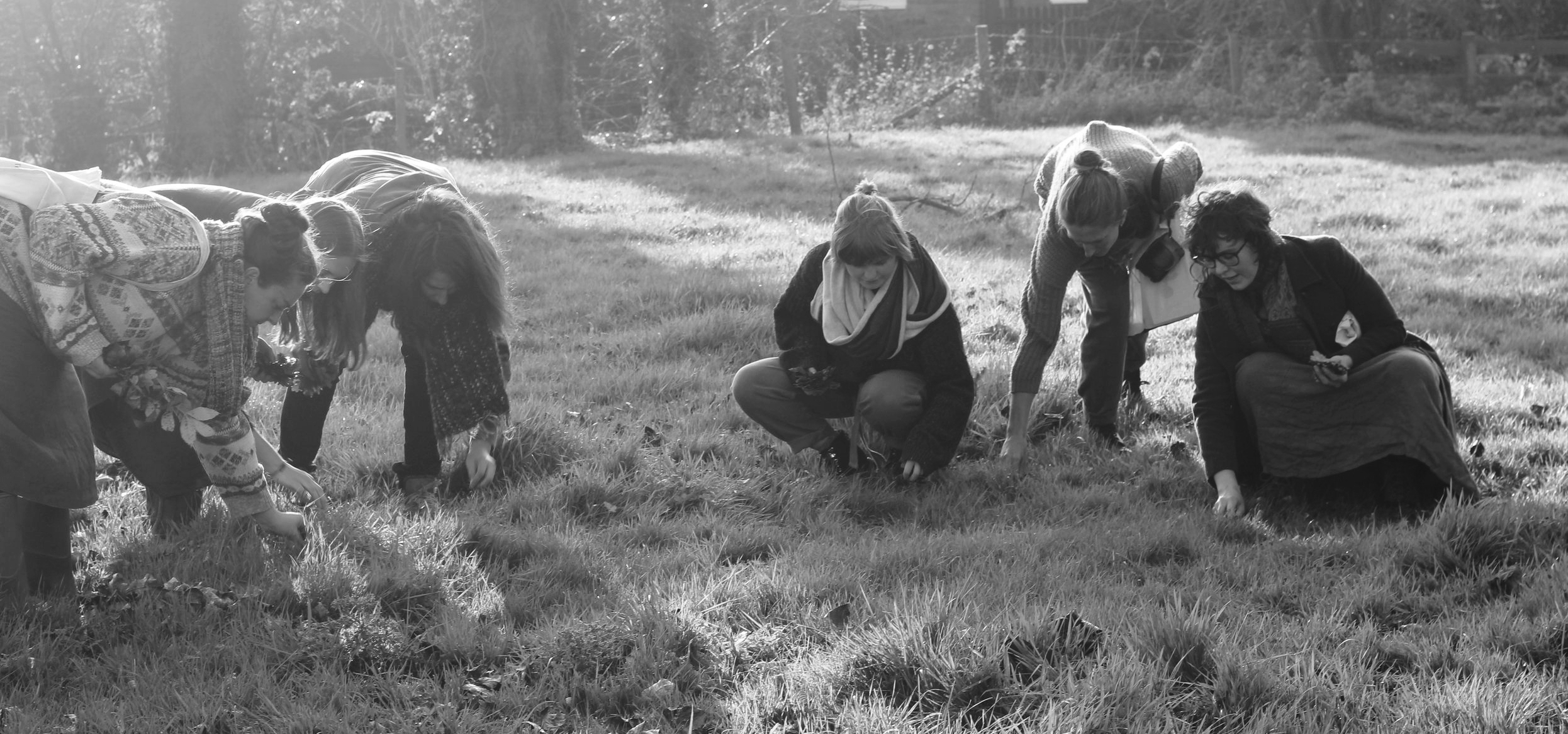 creative countryside gathering land art with hanna varga