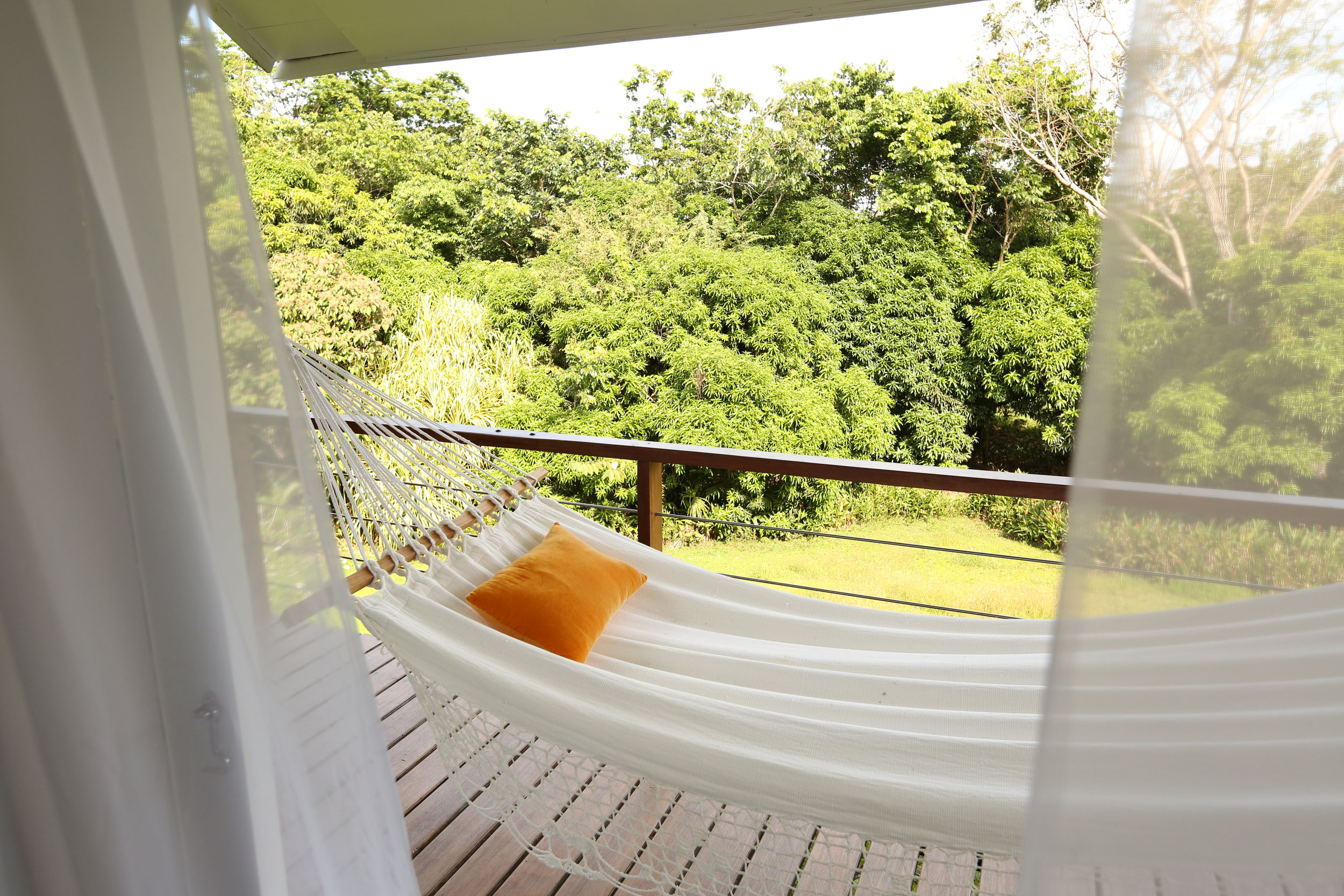 OM IN THE OSA - Your Hammock is waiting…