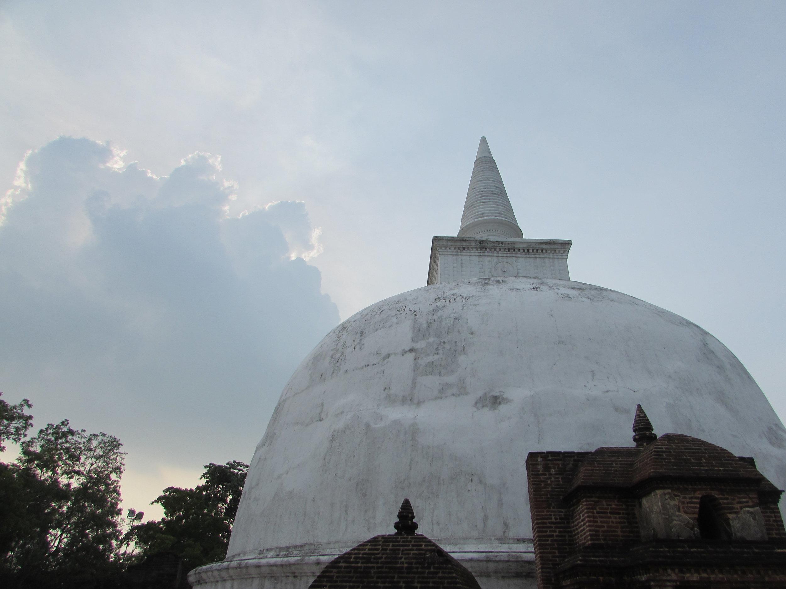 Stoopa at Polonnaruwa, captured by Jasmine Brand-Williamson