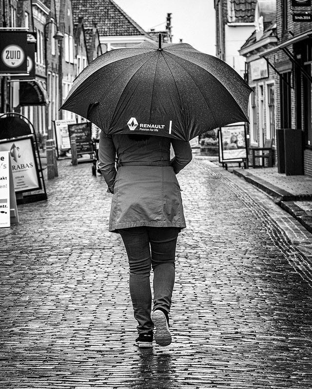 Ondanks een regenachtige dag toch leuke foto's kunnen maken met de Canon EOS 250D die ik aan het testen ben. Geschoten met de 18-55mm kitlens, f/5.6, 1/125 sluitertijd, ISO 200.  #canon #canonnederland #canon250d #eos250d #canoneos250d #spiegelreflex #fotografie #cameratest #monnickendam #noordholland #regen #paraplu