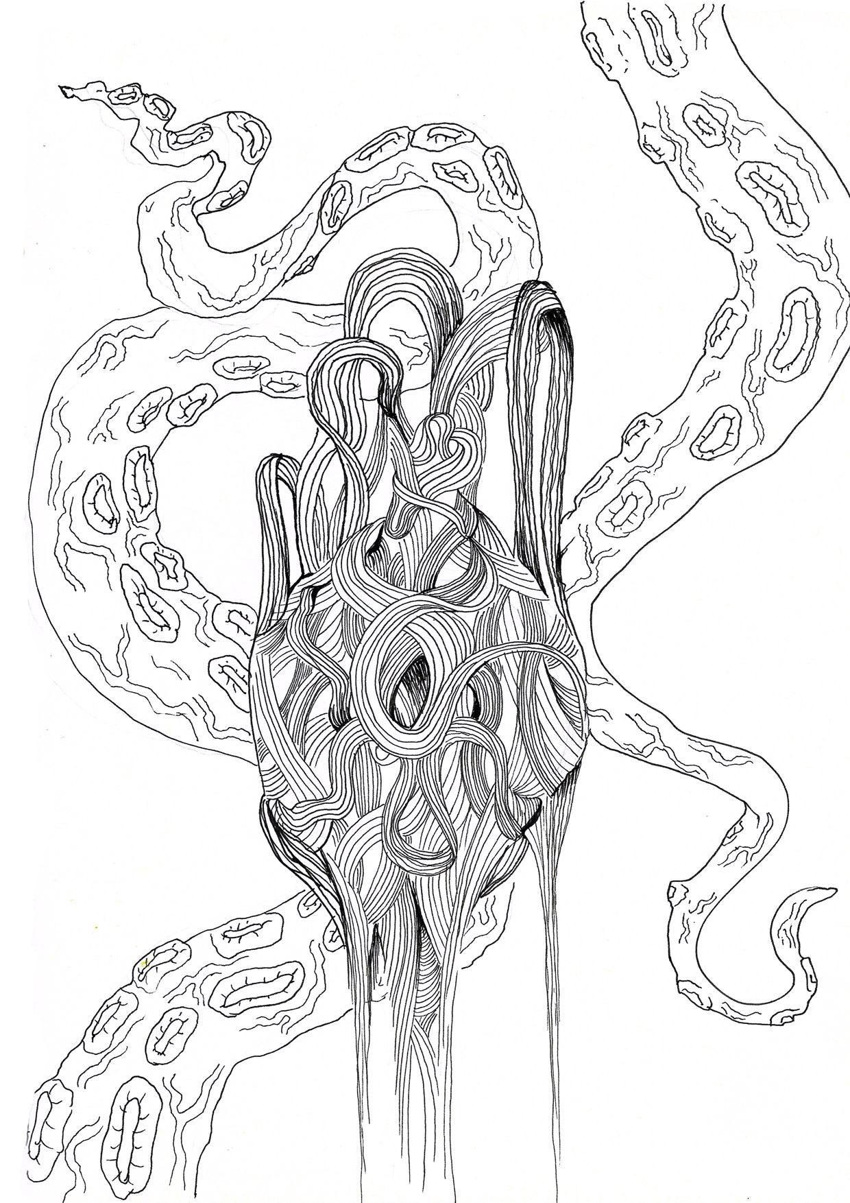 blöckfisk.jpg