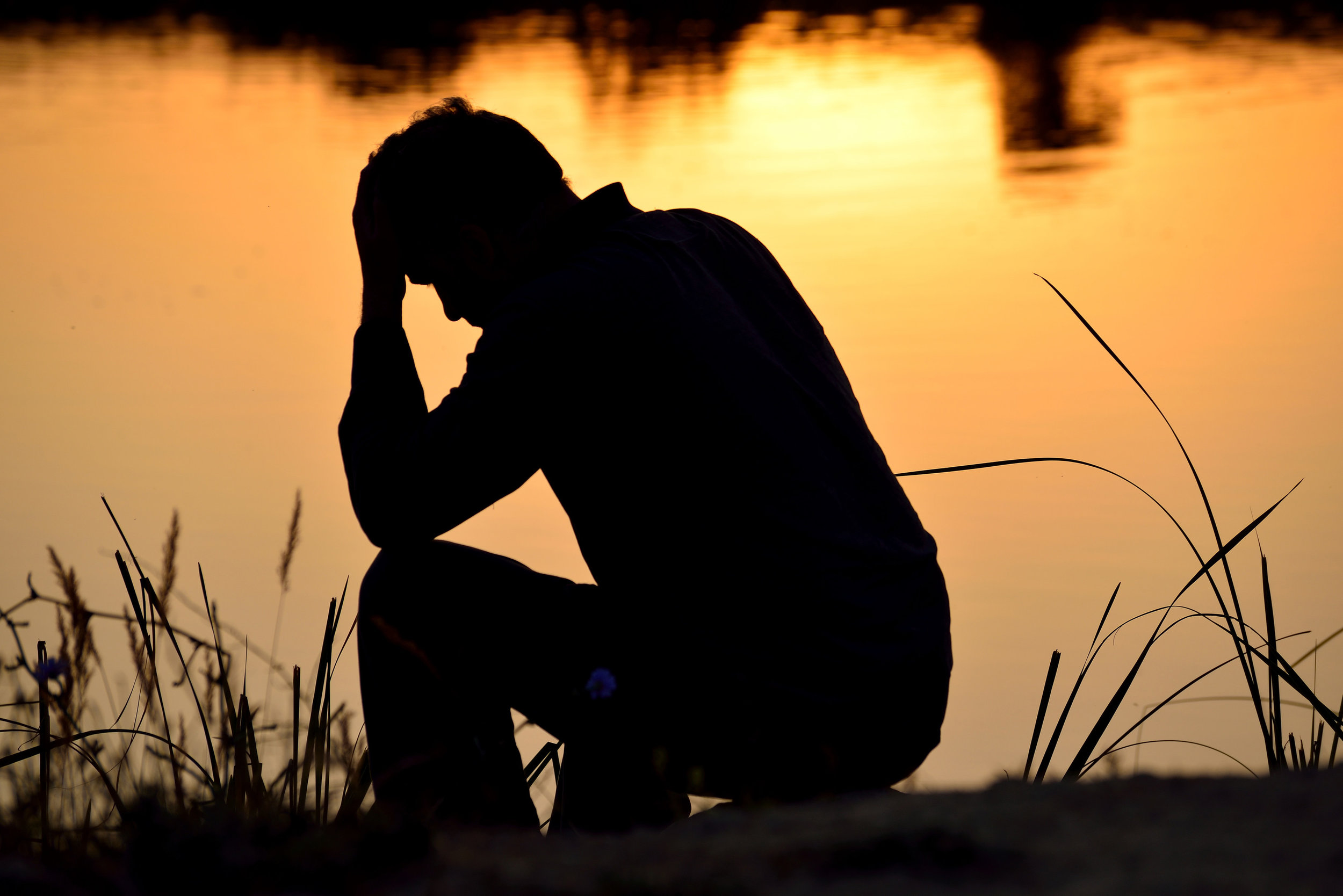 Need some help with your grief journey? - Click Here