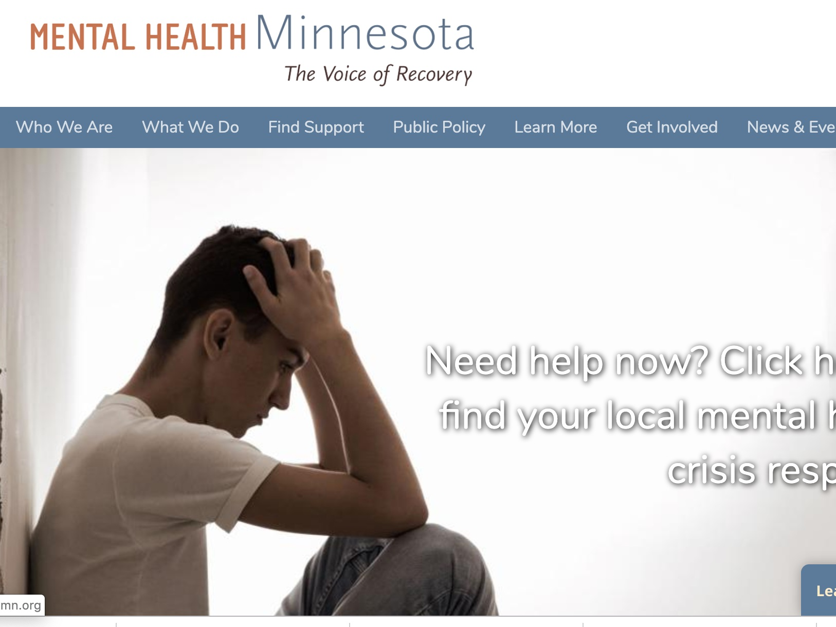 mental health minnesota - Mental Health Minnesota runs the state's Warm Line which is a peer to peer support service available Monday through Saturday from 5pm to 10pm.