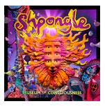 SHPONGLEMuseum of Consciousness (2013) -