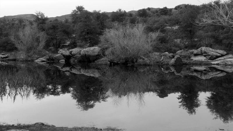 Oak Flat Pond