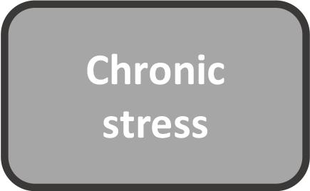 chronic stress.png