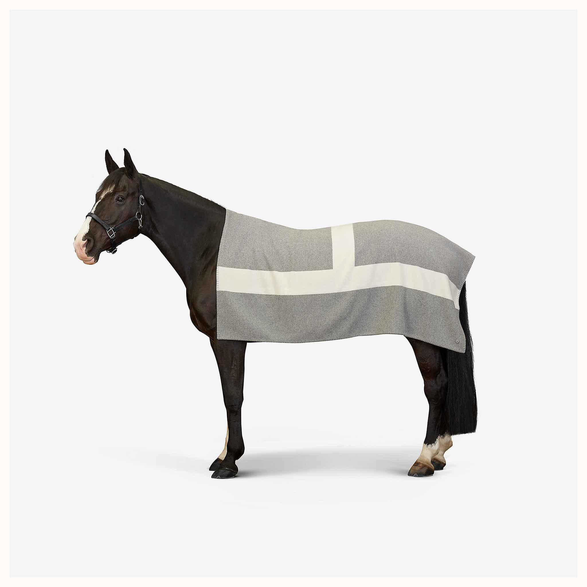 Hermes avoine-blanket--700079E 03-worn-2-50-0-2048-2048-q40_b.jpg