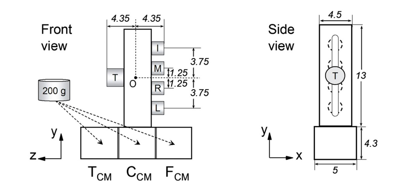Figure 2.  Sensorized grip device used to measure multi-digit forces and torques in 3 dimensions. From: Zhang et al. (2012).