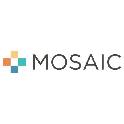 mosaic image.png