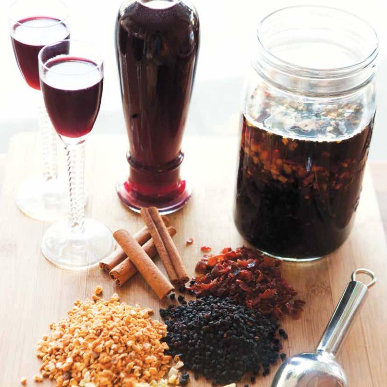 Elderberry Cordial Recipe - in Edible Magazine