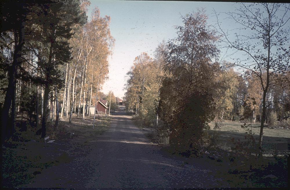 Bild 306