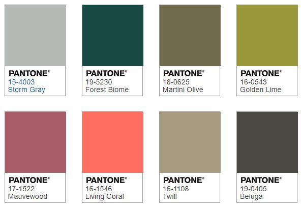 Pantone FOCAL POINT color combination