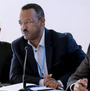 As a delegate of the Democratic Republic of Ethiopia, Mr. Endalew has been involved in negotiations under the UN Framework Convention on Climate Change since 2008. Having been a core team member of the Ethiopian Negotiating team, he was elected Chair of the Least Developed Countries Group in the climate change negotiations process for a two-year term, beginning in January 2017.  Trained as a meteorologist, Gebru Jember Endalew holds a BSc in Physics and Mathematics from Addis Ababa University, an MSc in Meterology and Air Quality from Wageningen University, and a Post Graduate Diploma in Meteorology from the University of Nairobi. He is a member of both the Association of Ethiopian Meteorologists and the Association of Ethiopian Physicists.  Mr. Endalew now serves as Institutions Development and Strategic Partnerships Advisor with the Global Green Growth Institute on the Ethiopia Country Programme, providing strategic support to the government in the regional capacity building programme, the national capacity development programme, the GHG inventory framework, and in climate diplomacy.  Previously, Mr. Endalew was Programme Coordinator for the establishment of the Ethiopian Panel on Climate Change (2013 to 2014), Programme Coordinator for the Climate Change Forum-Ethiopia (2010 to 2013), Head to the Meteorological Research and Studies Department in Ethiopia (2009 to 2010), and a meteorologist with Ethiopia's National Meteorological Agency , in the Department of Development, the Department of Weather and Early Warning and finally in the Climate Change and Air Pollution Studies Team (2000 to 2008).  Mr. Endalew was an author for Working Group I-Science of Climate change of the First Assessment Report of The Ethiopian Panel on Climate Change in 2015.
