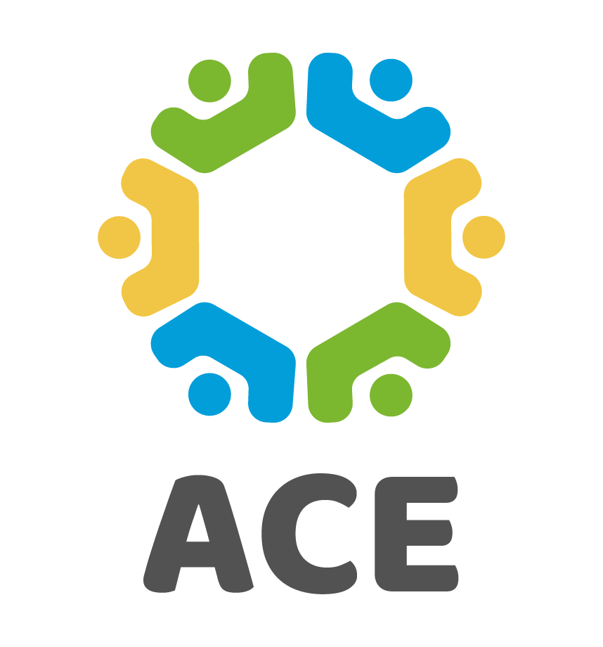 African Clean energy (ACE) - Producing the ACE 1 solar biomass energy system: an advanced cookstove which reduces smoke to negligible levels while offering solar energy.