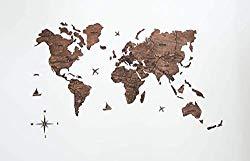 Large World Map-Amazon 69.00