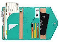 Travel Passport Wallet- Amazon 12.99