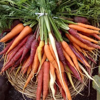 St-Johnsbury-Farmers-Market.jpg