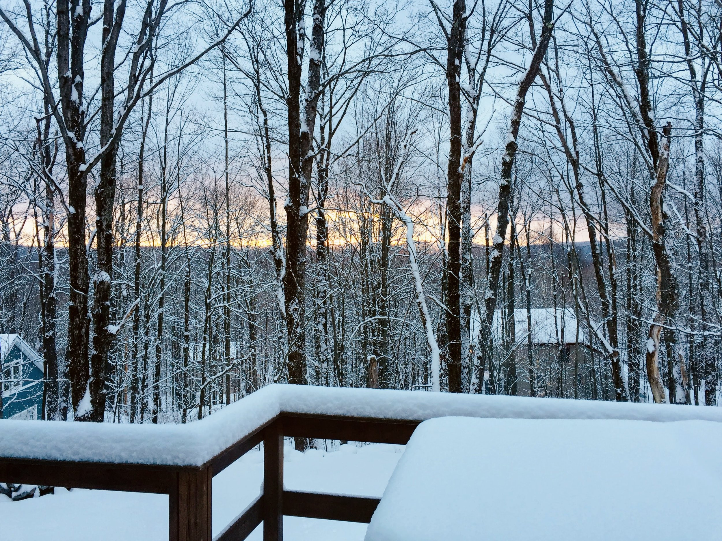 Looking out the back deck in the winter