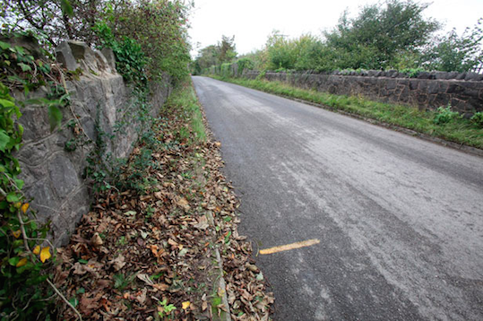 Longwood Lane, which was covered in snow when Joanna's body was found. The yellow marker on the road indicates where the body was found on the verge (source: The Telegraph)
