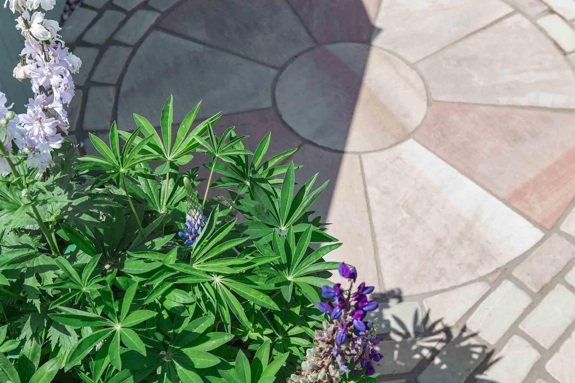 Garden_Brighton_2small.jpg