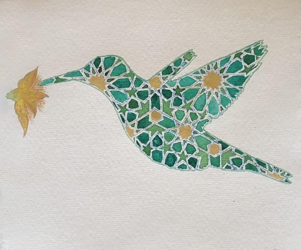Shaheen humming bird.jpg