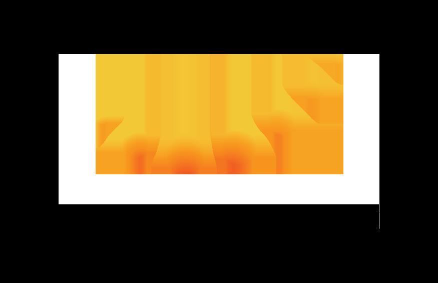 AYN Logo Wordmark.png