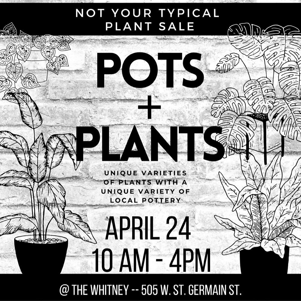 Hey everyone! We're super excited to be downtown Saint Cloud @thewhitgal tomorrow for this great event. Come join us if you can! Congratulations to @heijeu and her wonderful space! #pots+plants