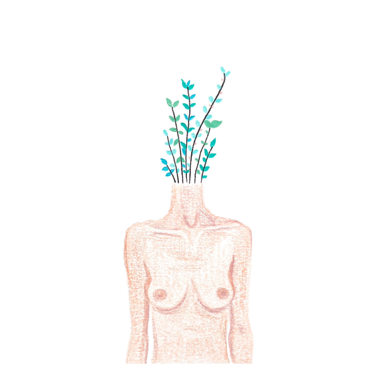 nude planthead03.jpg