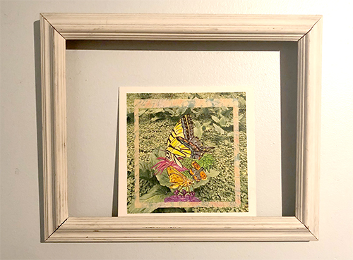 I bought this butterfly from local musician Marian McLaughlin as visual to remind and encourage myself of the  Butterfly School journey  I am on. Marian did all the art work music for her new album  Lake Accotink . The album and the art work are magnificent.