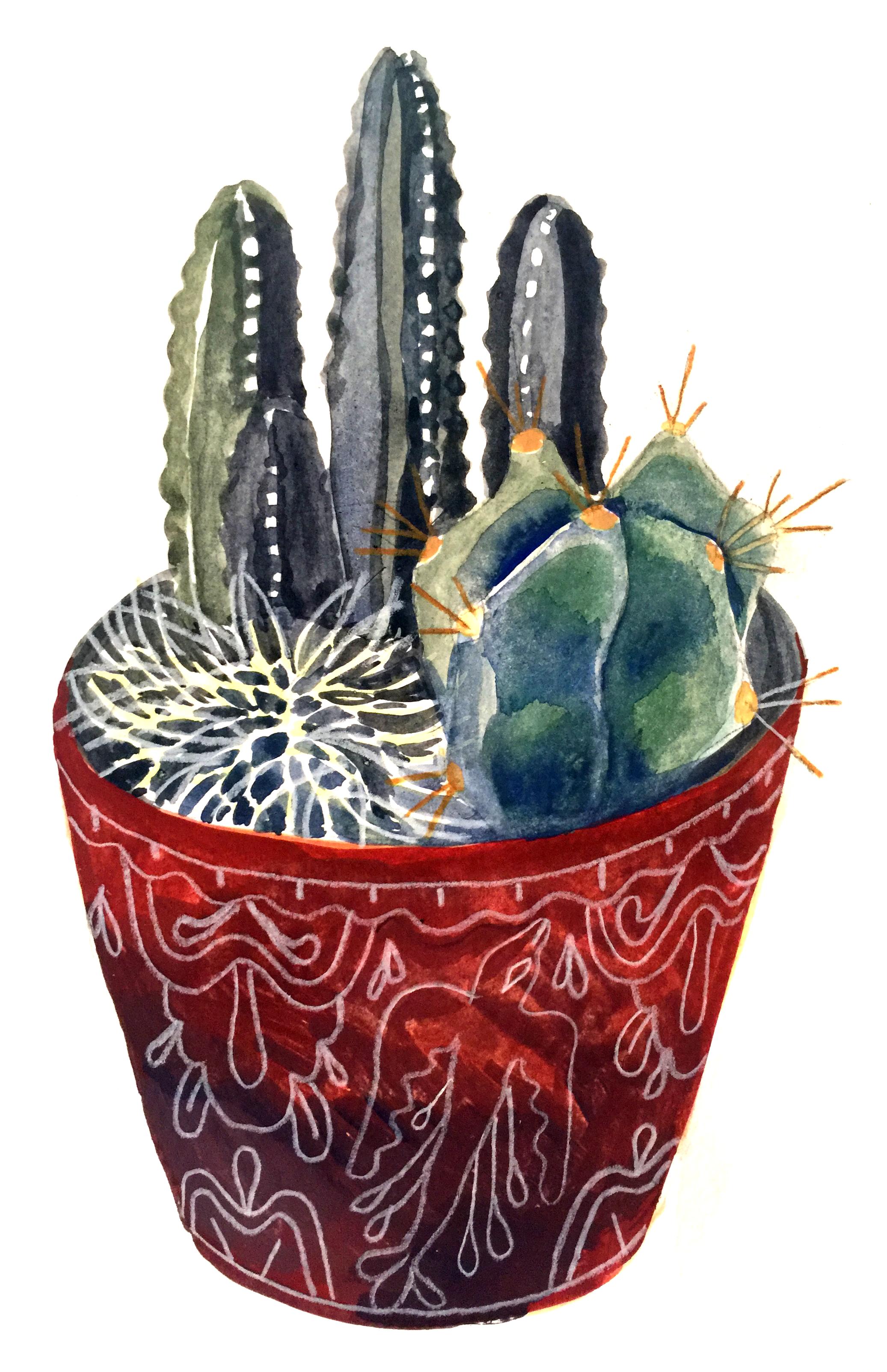 cactus.png
