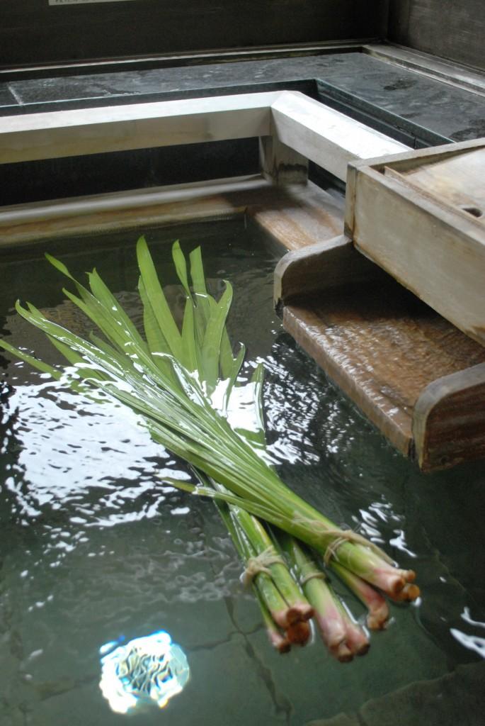 Shobu yu (picture from Biwako Hanagaido)