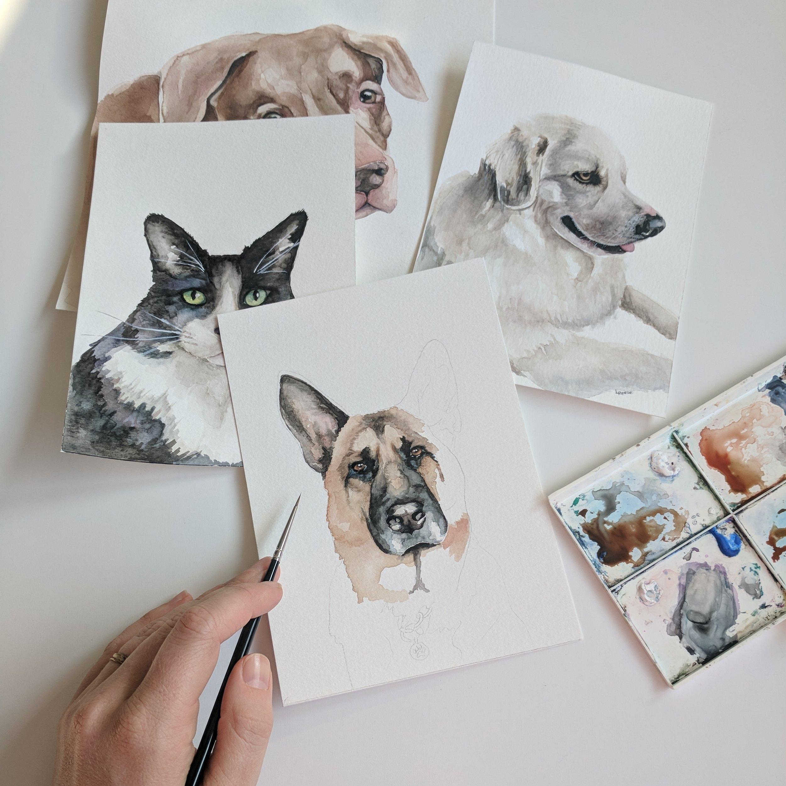Pet Portraits | Lauren Reese