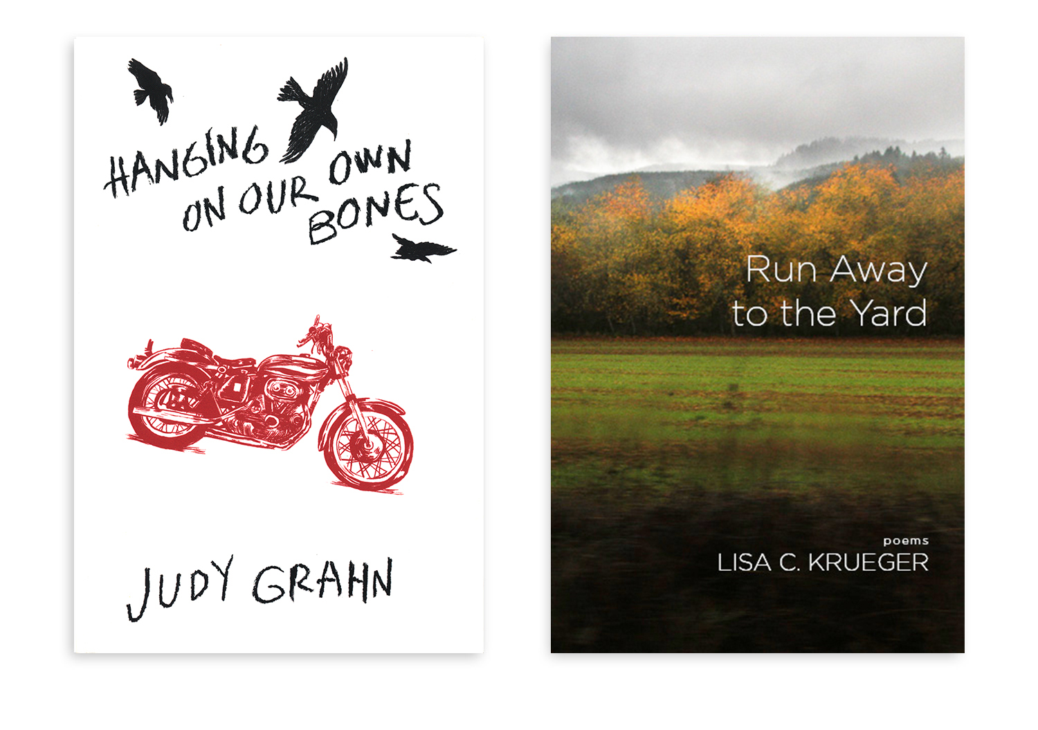 Hanging On Our Bones  and  Run Away to the Yard  were other titles I worked on while at Red Hen Press. Here you see  Run Away to the Yard  with and without its jacket. I wanted to incorporate a tree motif throughout the book's design.