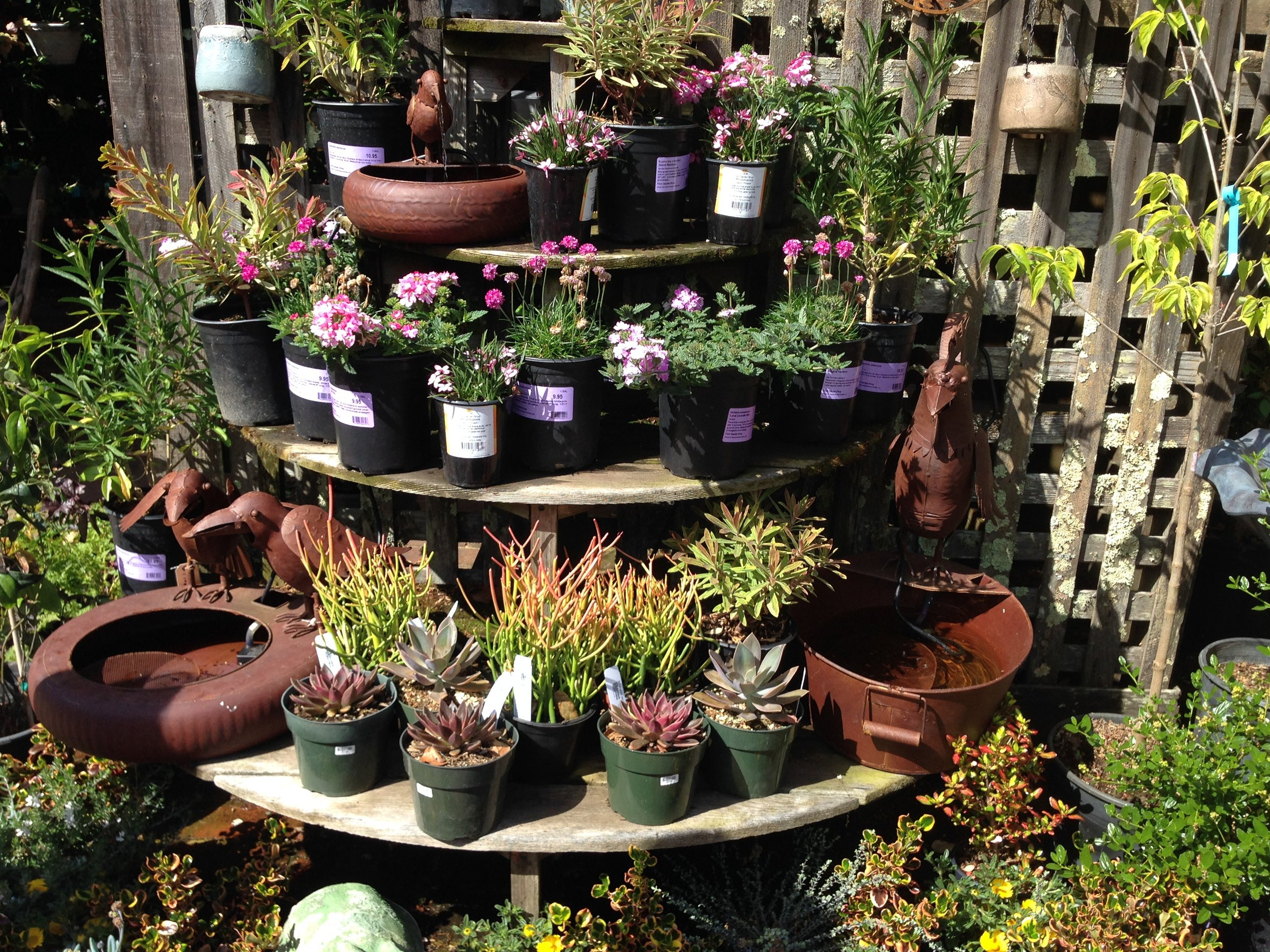The Beauty of Filoli: Plants for Sale