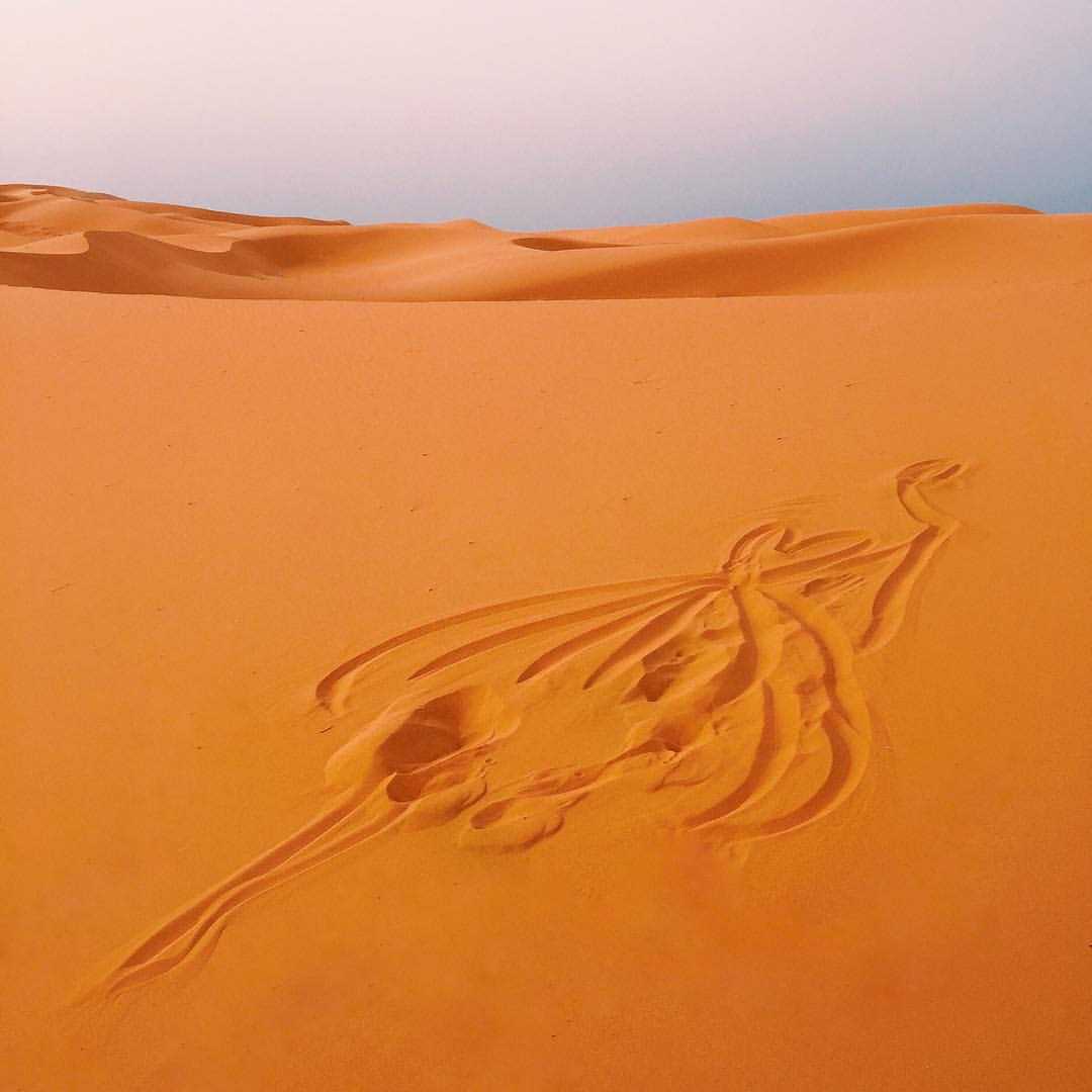 5_DESERT DANCER 1_SAHARA.JPG