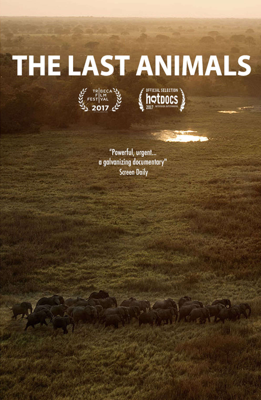 The Last animals.jpg