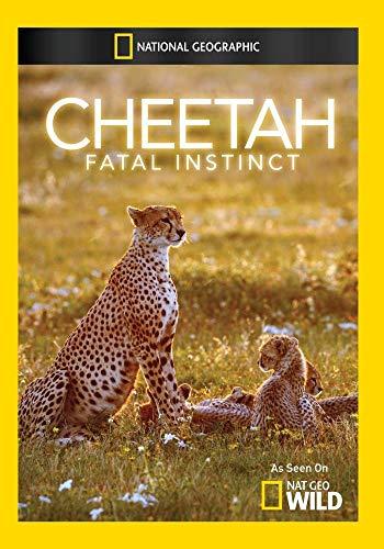 Cheetah Fatal Instinct.jpg