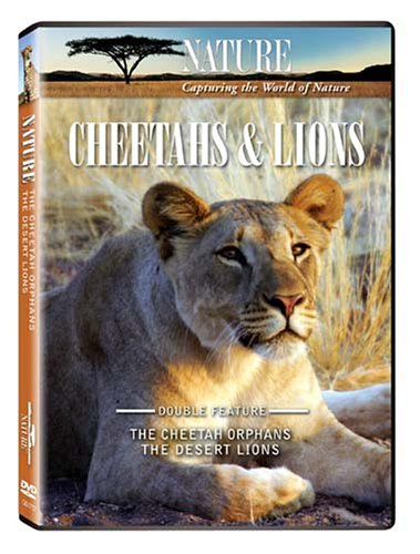 Cheetahs and Lions.jpg