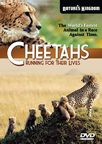 Cheetahs Running for their Lives.jpg