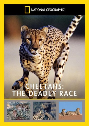 Cheetahs The Deadly Race.jpg